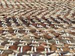 Vloerkleed jute & leer bruin geweven 250x350cm